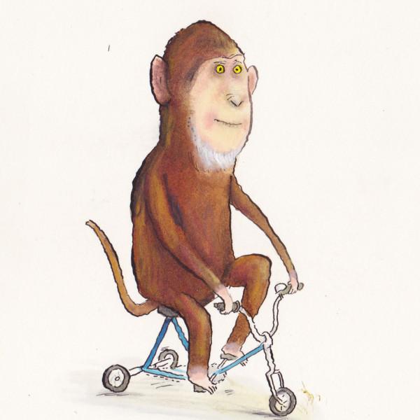 monkey on trike illustration